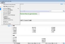 uTorrent Portable V3.5.5 Build 45660 Stable汉化正式版