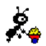NetAnts网络蚂蚁官方下载工具v1.25免费
